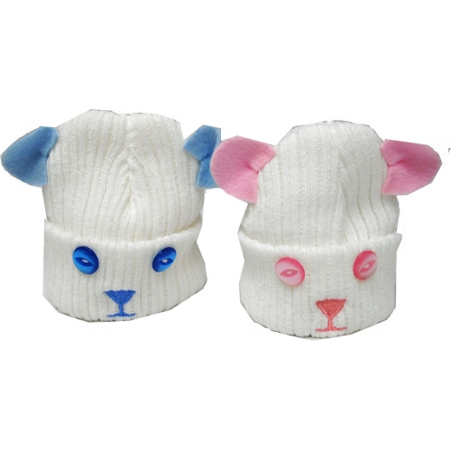 Boys And Girls Teddy hats    hat18